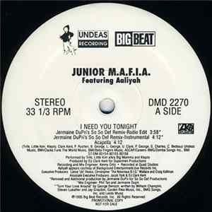 Junior M.A.F.I.A. Featuring Aaliyah - I Need You Tonight herunterladen